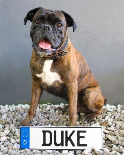 Duke von Grafenwerth